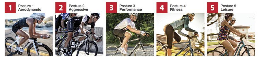 Saddle-Posture-Chart